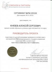 Князев_РуководительПроекта