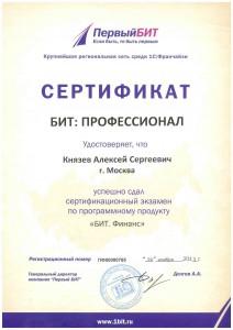Князев_БИТ.Финанс_Проф_1700